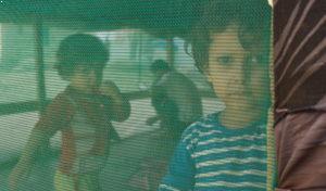 enfant voile vert liban