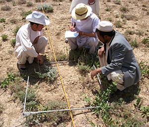 Afghanistan Agriculture Yakawlang
