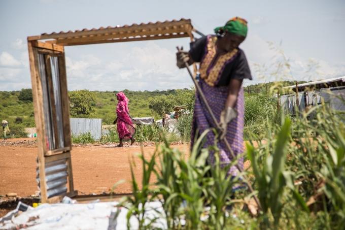 Soudan du Sud camp refugies culture agricole
