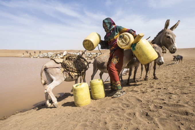 kenya pastoralist
