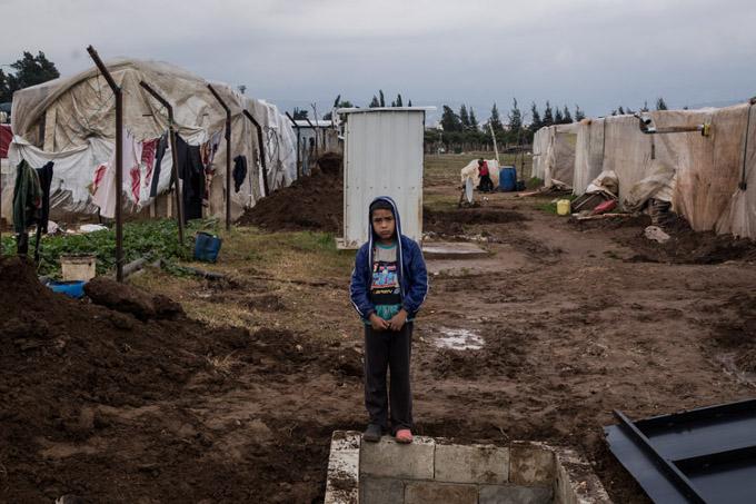 réfugié camp liban