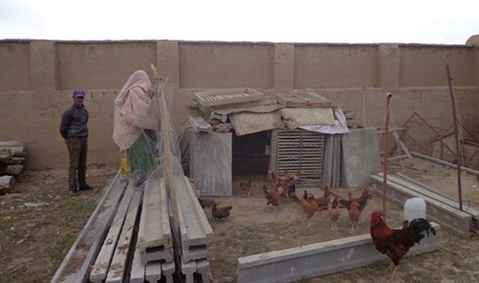 Afghanistan Wardak