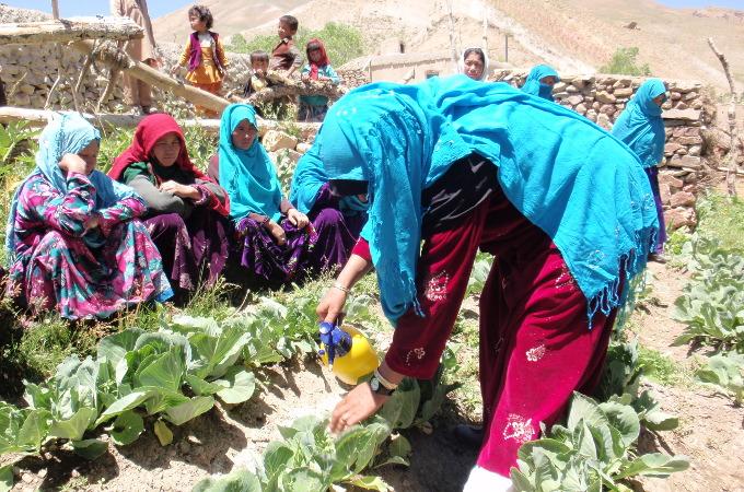 bamyan afghanistan enfants femmes agriculture