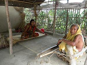 bangladesh agriculture