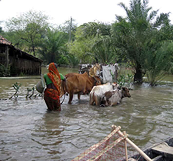 Bangladesh transformer l eau de pluie en eau potable solidarit s international - Eau de pluie potable ...