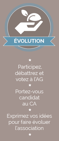 Adhesion-Evolution
