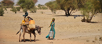 Populations needs towards conflicts in Sahel