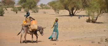 Impact des sécheresses au Sahel